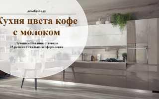 Проект кухни кофейной тематики