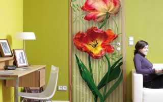 Фотообои на дверь: идеи и примеры дизайна