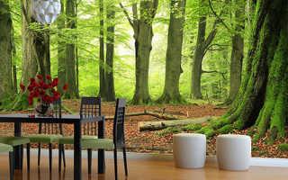Зеленые фотообои с лесом для спокойной обстановки