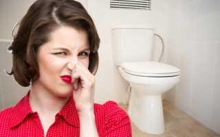 Запах канализации в туалете: какие причины и как устранить, способы предотвращения